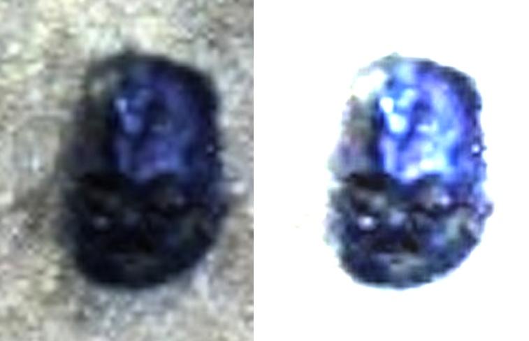 Странный марсианский камень похож на голову робота или Дарта Вейдера
