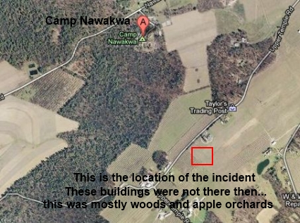 Зло из яблоневого сада (2 фото)