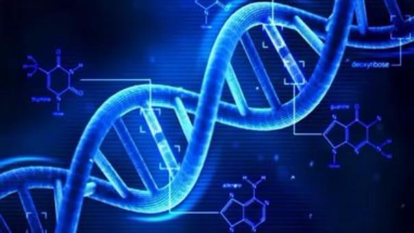 Эксперт заявила о невозможности создания генетического оружия на основе биоматериалов, собранных у россиян