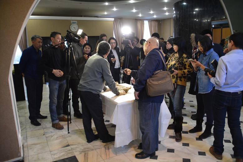 В Якутии после новой находки возобновились дискуссии о клонировании пещерного льва (4 фото)