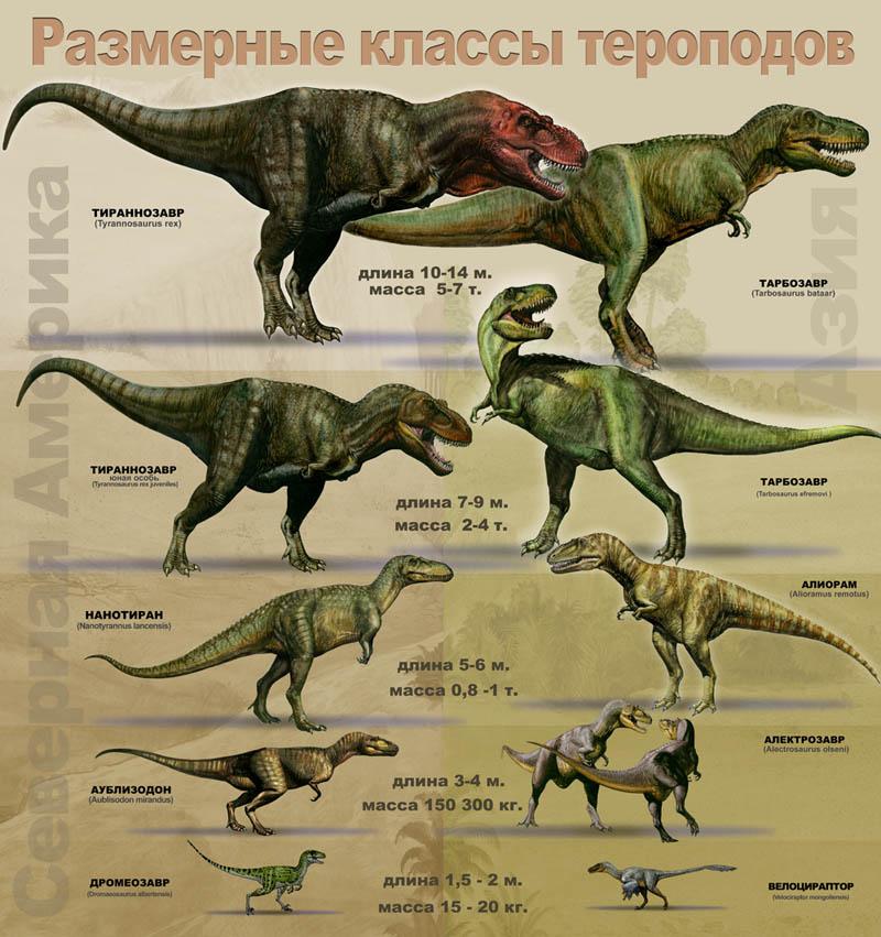 В Индии найдены свежие останки существа, похожего на динозавра