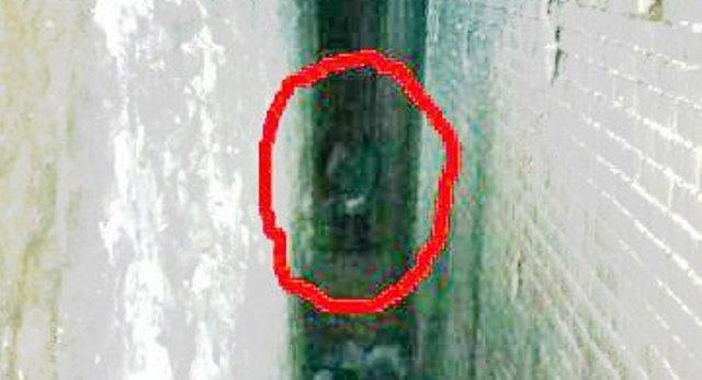 В Ростовском парке-музее засняли призрака?