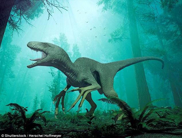 В Индии найдены свежие останки существа, похожего на динозавра  (3 фото)