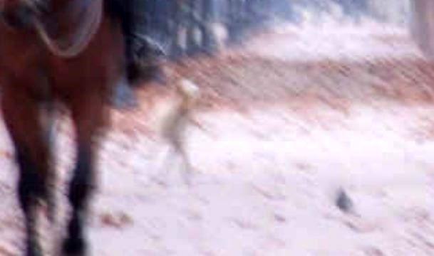 История фотографии с гуляющим пришельцем в парке