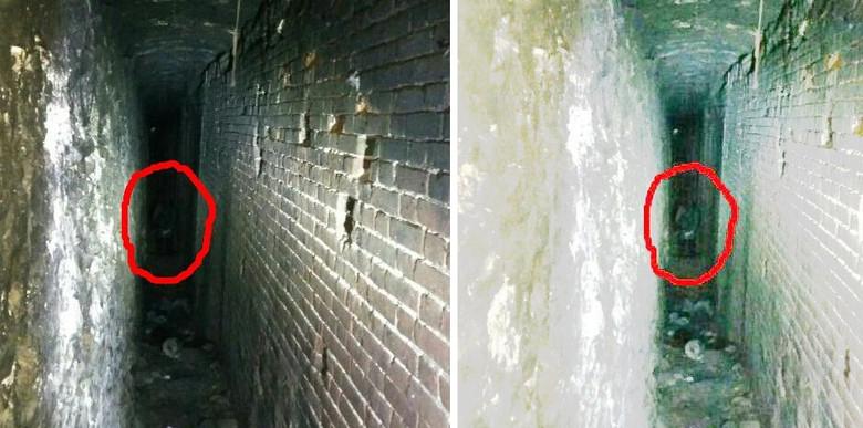 В Ростовском парке-музее засняли призрака? (4 фото)