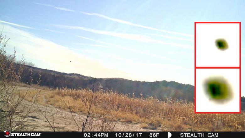 В Небраске камера наблюдения за дикими животными засняла несколько НЛО  (5 фото)