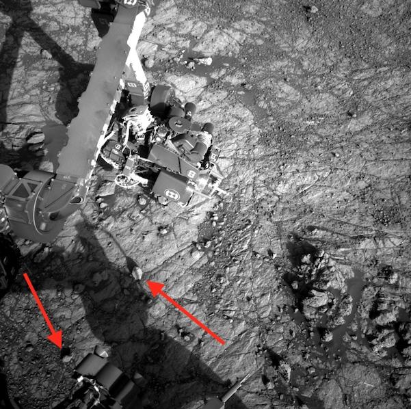 New discoveries on Mars: Seashells 1