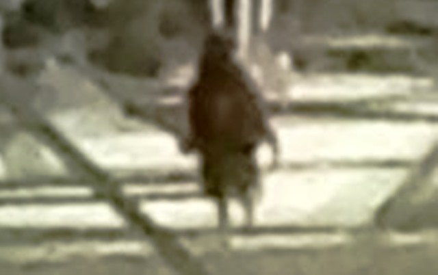 Жуткое существо на фото, сделанном на территории завода в Техасе (3 фото)