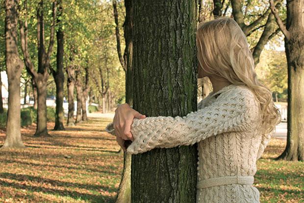Древесный гороскоп друидов: У каждого есть свое дерево (3 фото)