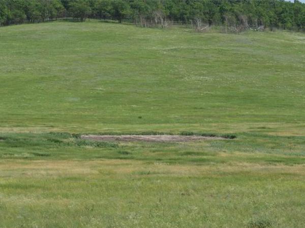 Места посадок летающих тарелок (4 фото)