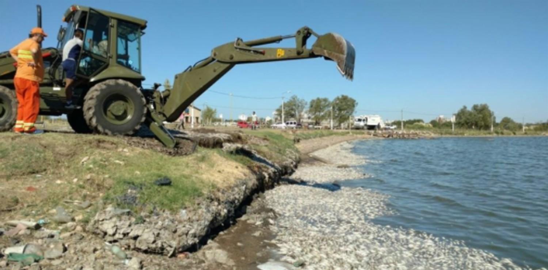 На берег Аргентины внезапно выбросило тысячи рыб