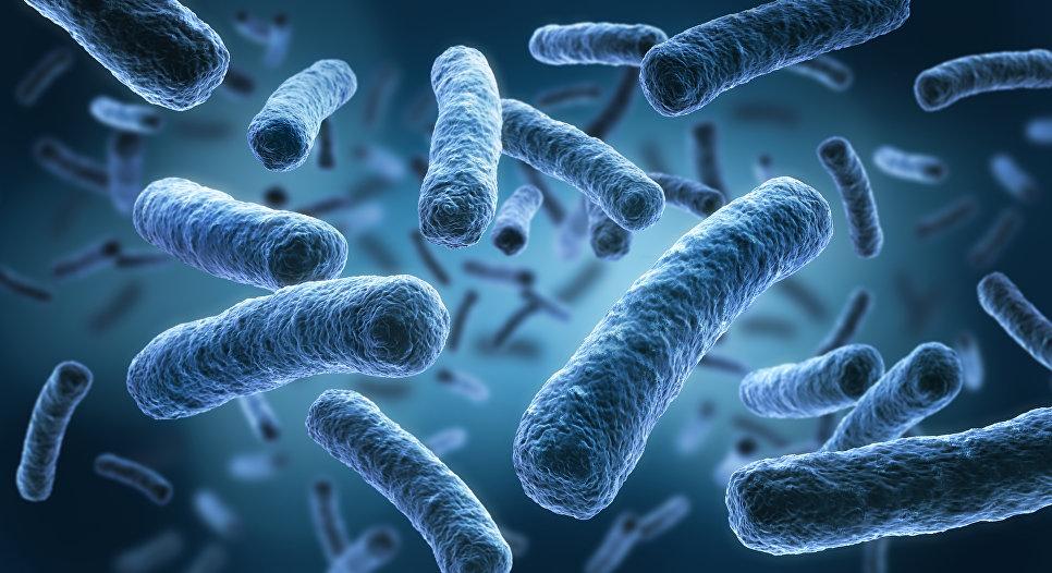 В США обнаружили бактерии пневмонии, которые неуязвимы даже для новых мощных антибиотиков