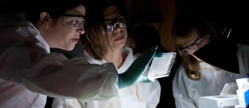 "Эксперты напугали мир ""кошмарной бактерией"""