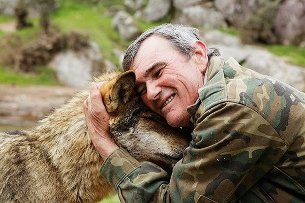"""Испанский """"Маугли"""", который 12 лет прожил в стае волков, хотел бы вернуться к ним снова"""