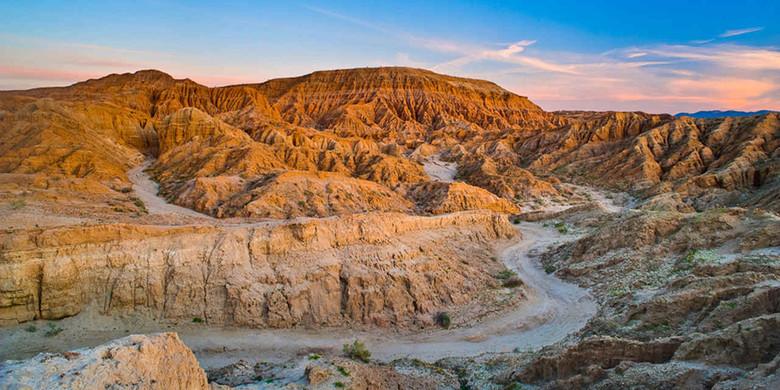 Зловонные пустынные йети Калифорнии (4 фото)