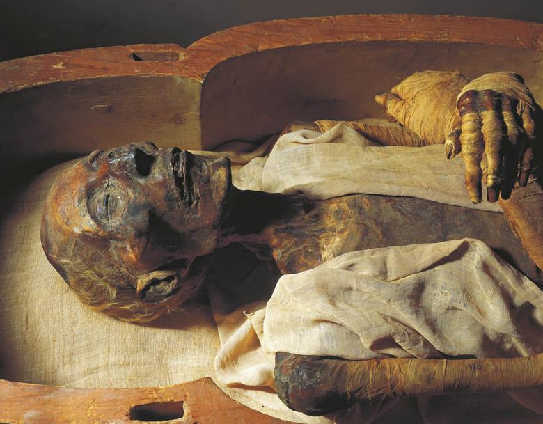 Загадка следов никотина и кокаина в древних мумиях Старого Света (5 фото)
