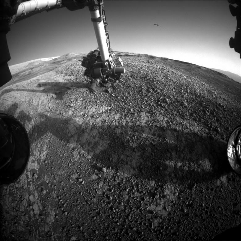 На январском снимке с Марса обнаружили НЛО или... птицу (3 фото)