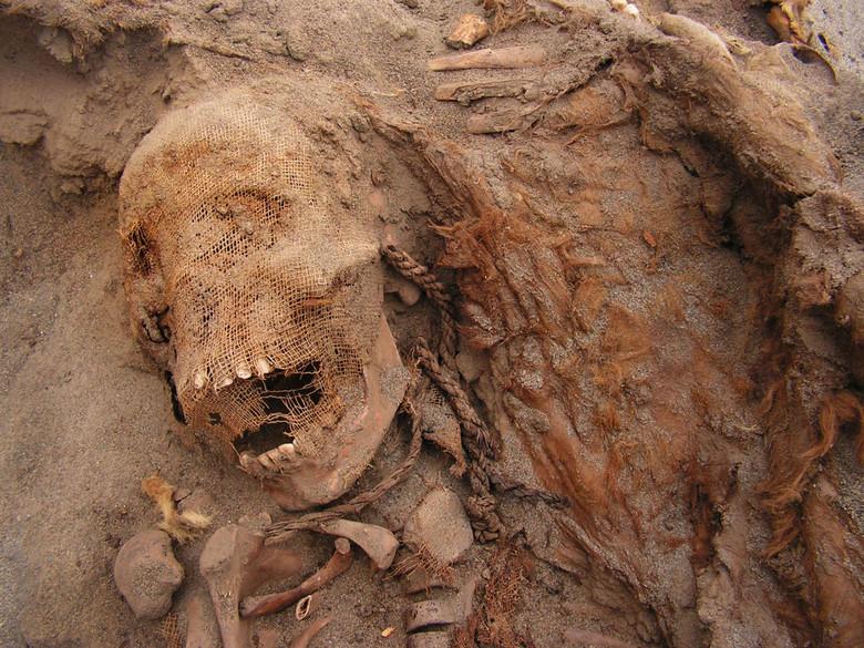 Перуанский город Уанчако был местом крупнейшего жертвоприношения детей в истории (8 фото)