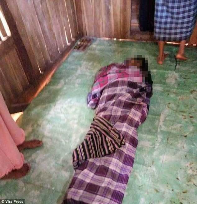 Индонезийцы в шоке от огромного питона, который убил и целиком проглотил женщину (6 фото + видео)