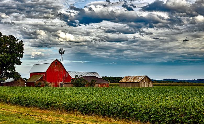 Оборотни Висконсина (3 фото)
