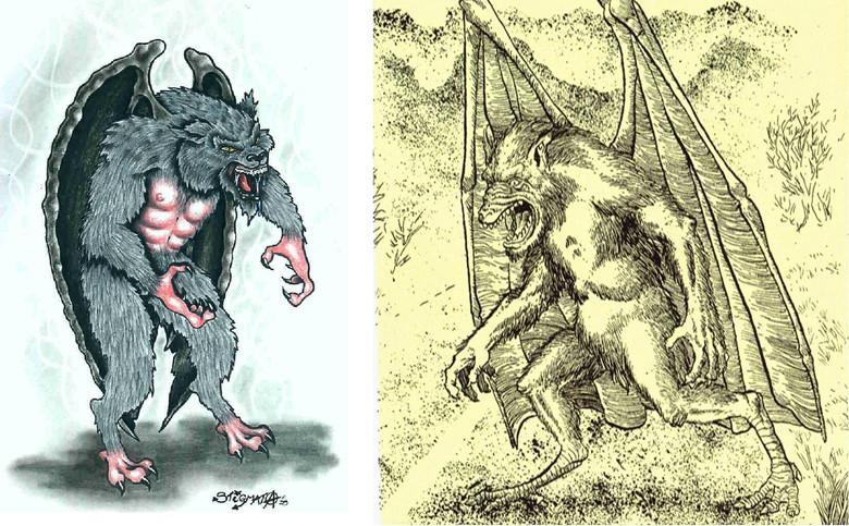 """Наблюдения странного """"Бэтсквача""""- двуногой обезьяны с крыльями как у летучей мыши (5 фото)"""