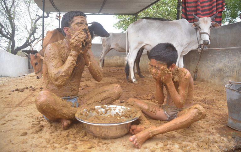 """Индиец устраивает для себя и сына навозные """"ванны"""" (4 фото + видео)"""