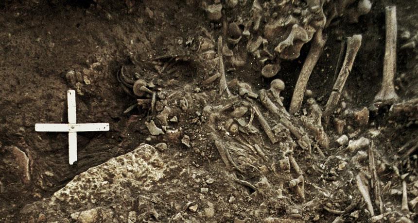 В 5000-летней могиле нашли следы самого раннего и неизвестного штамма чумы