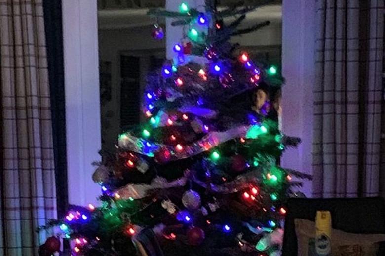 Призрак спрятался за рождественской елкой 1