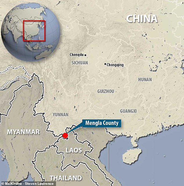 У летучих мышей в Китае нашли вирус, который может стать новой Эболой