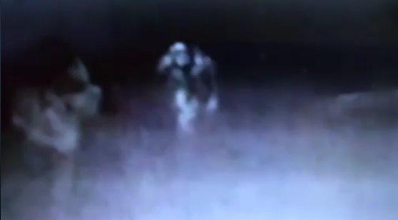 В пабе засняли пугающее существо, подкрадывающееся к посетителю