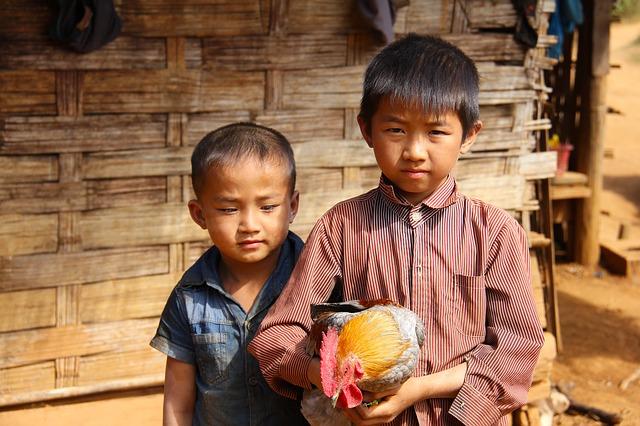 В Китае родились близнецы от двух разных отцов