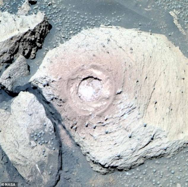 На Марсе растут грибы, заявляют ученые