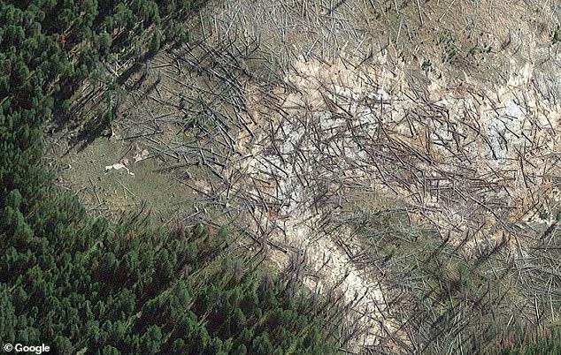 Йеллоустонский вулкан расширяется и уничтожает деревья в парке