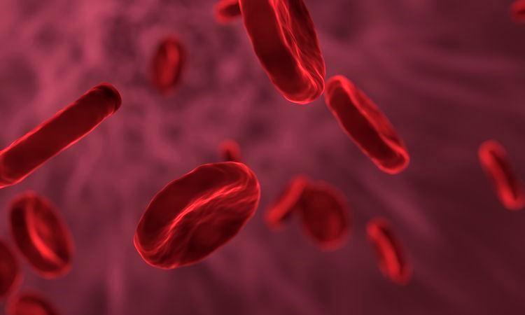 Золотая кровь - Самый редкий и самый ценный тип крови в мире