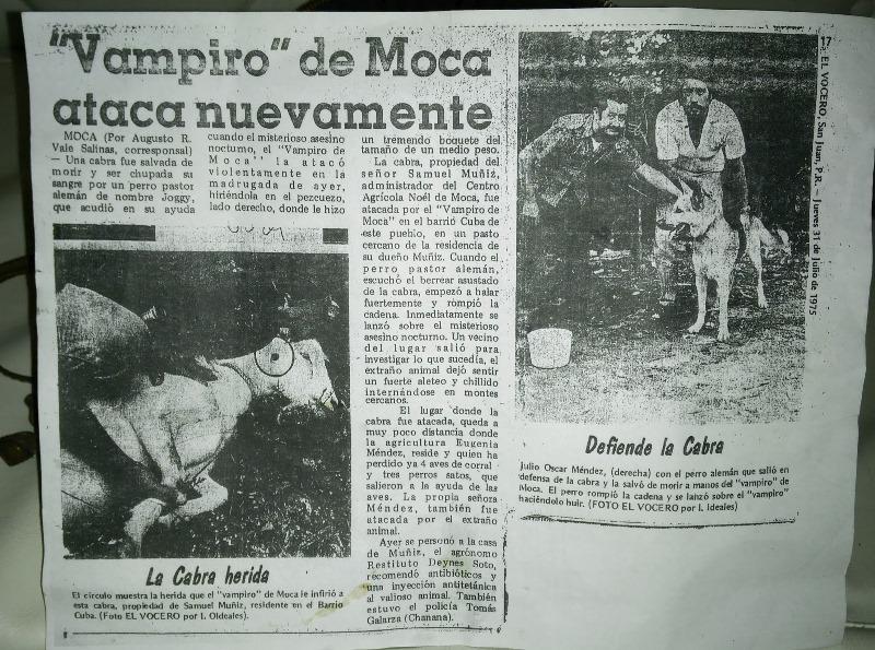 Жительница Пуэрто-Рико рассказала про плотоядных обезьян-мутантов