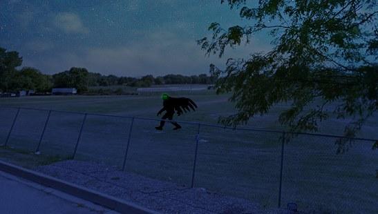 Мужчина позвонил по номеру 911 и рассказал, что увидел крылатое чудовище