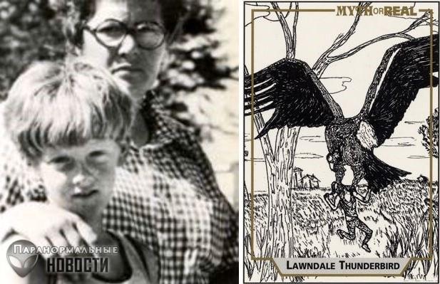 Загадка гигантских птиц Иллинойса, способных поднять в воздух 10-летнего ребенка