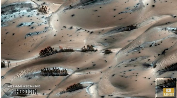 На Марсе есть леса, озера с водой и голубое небо?