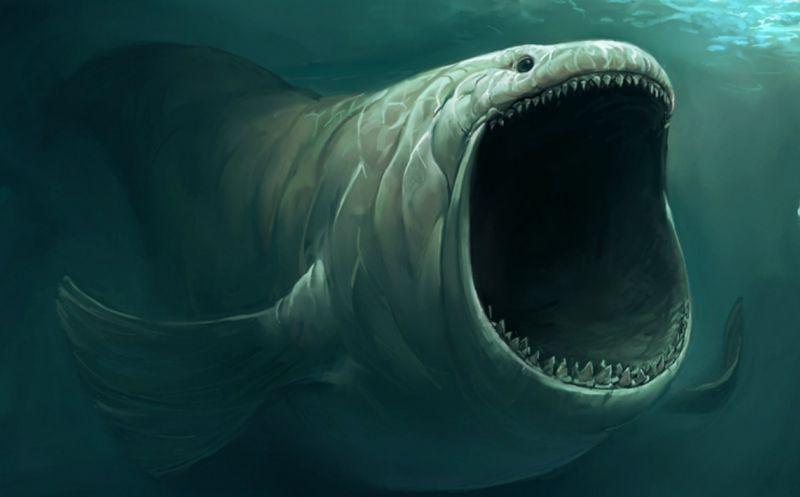 Случаи ловли необычных рыб, которые потом были словно стерты из истории