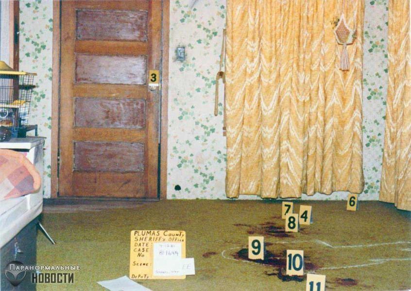 Тайна нераскрытого массового убийства в лесном доме