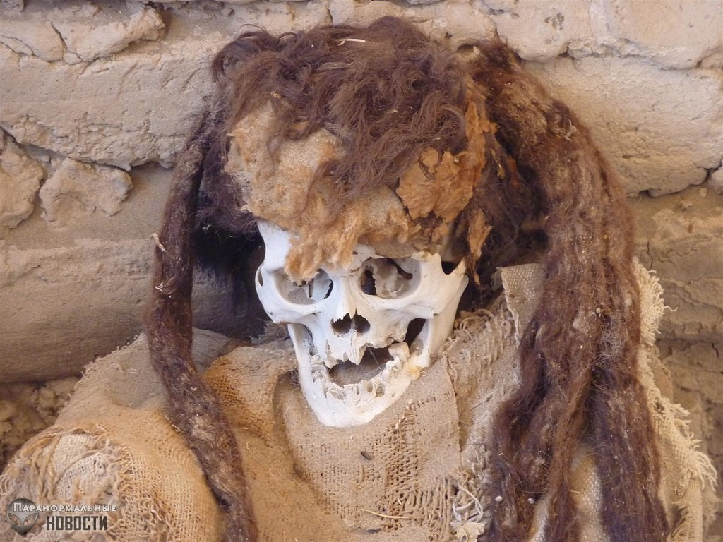 Бабушка забрала руку мумии и навлекла на себя проклятие