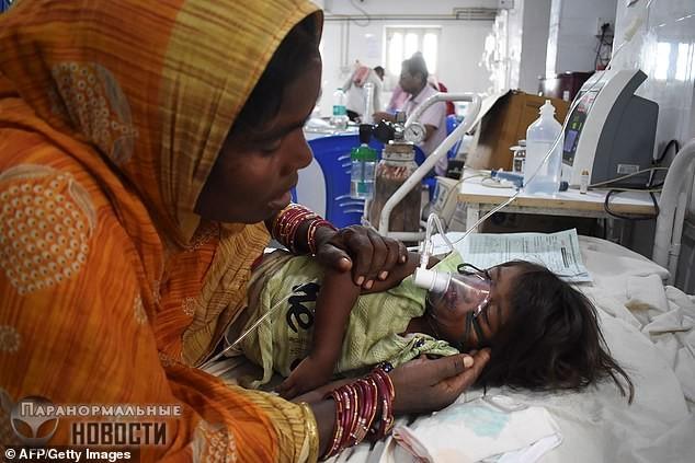 В Индии из-за фруктов личи умерло уже 152 ребенка