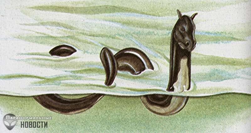 Собачий лай раздражал водяного монстра