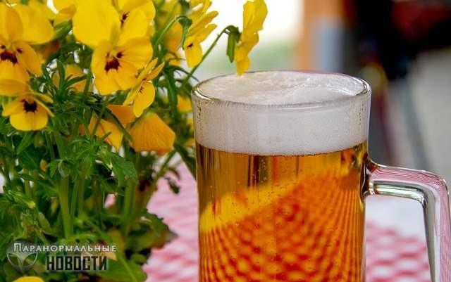 Колено любителя пива болезненно распухло из-за странной жидкости