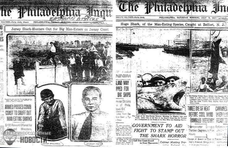 Кровавое лето 1916 или Акулья резня в Нью-Джерси