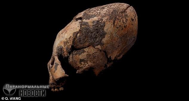 Самые древние в мире вытянутые черепа обнаружили в Китае