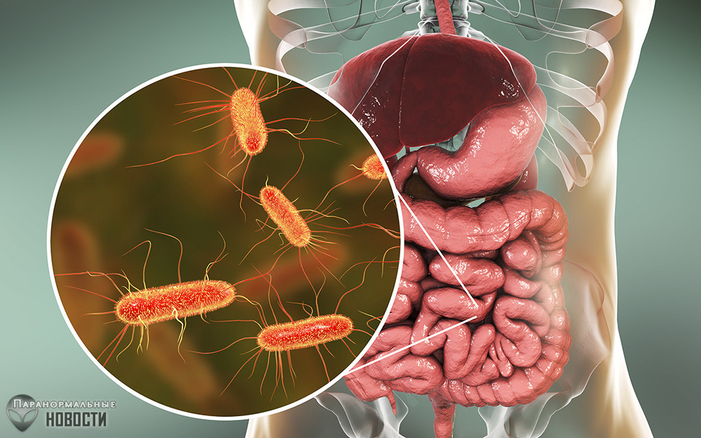 10 бактерий, которые могут заживо съесть человека