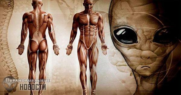 Теория Планеты-тюрьмы: Люди и есть самые настоящие инопланетяне на Земле
