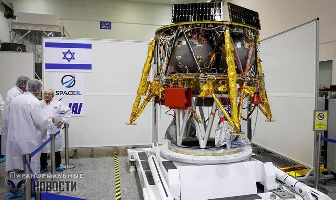 Смогут ли израильские тихоходки выжить на Луне?