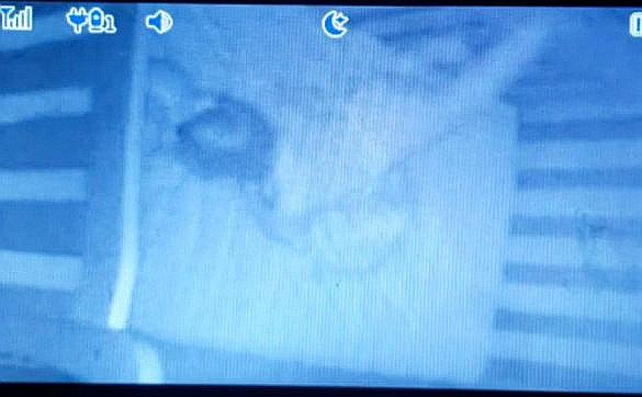 На бэби-монитор засняли как нечто тянуло ребенка за ноги